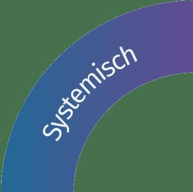 ansatz_systemisch